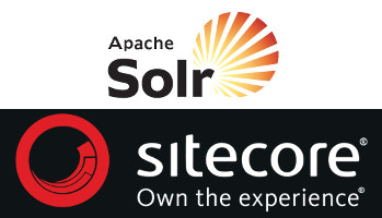 sitecore and solr - custom field reader and indexing